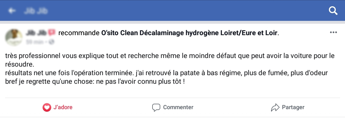 avis facebook ositoclean carbon cleaning regénération fap
